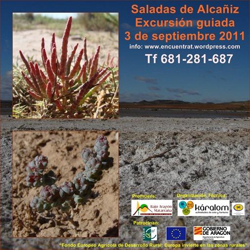 Saladas de Alcañiz