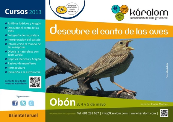 2.Canto aves-1