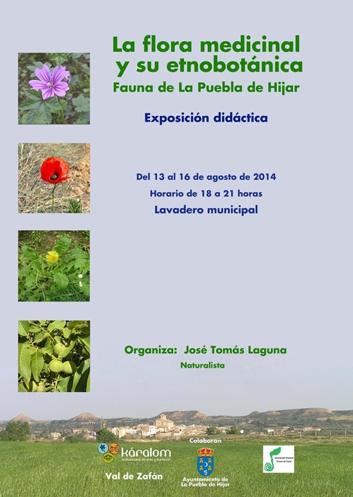 La flora medicinal_Cartel de Pepe 2014_Rev 1
